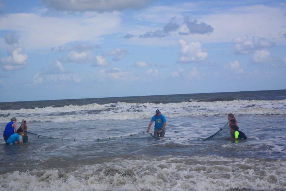 Ki Jake leads the seining in rough surf email.jpg