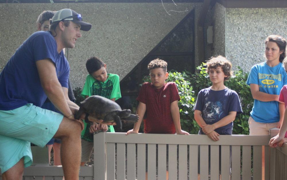 Meeting a gopher tortoise email.jpg