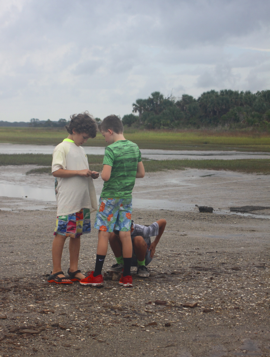 Searching for shark's teeth on the mud flat email.jpg