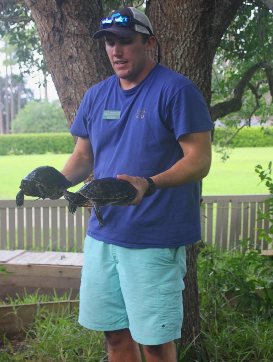 Two water turtles email.jpg