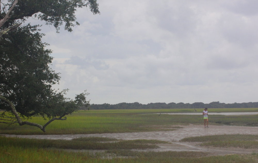 Walking thru salt marsh email.jpg