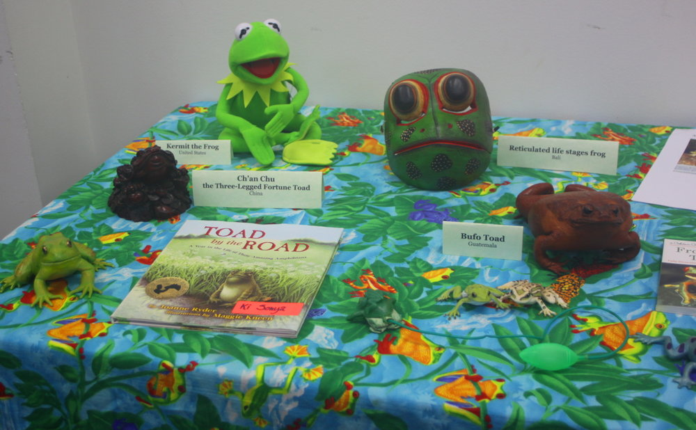 Frogs of the World display email.jpg