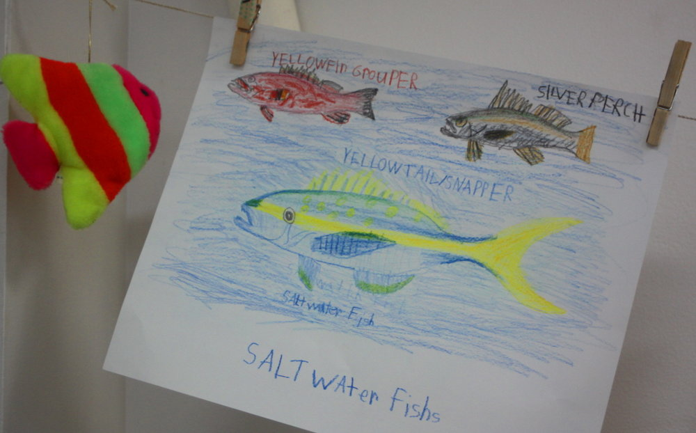 Fish drawings closeup email.jpg