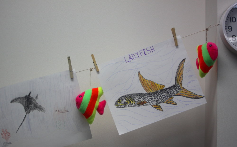 Fish drawings displayed email.jpg