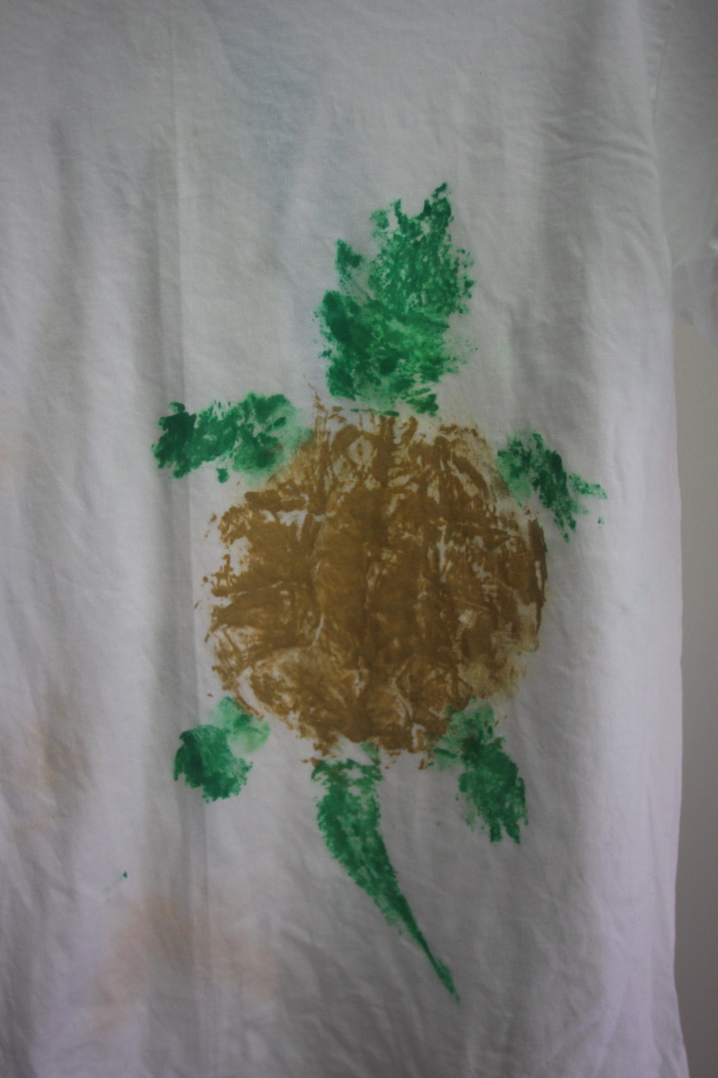 Fish printed turtle email.jpg