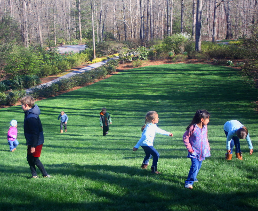 Playing on the great lawn of Manor House email.jpg