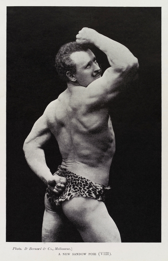 _A_New_Sandow_Pose_(VIII)_,_Eugen_Sandow_Wellcome_L0035270_-_restoration.jpg