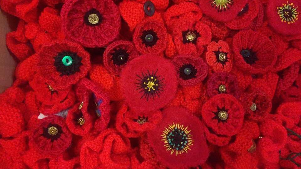 5000 Poppies image.jpg