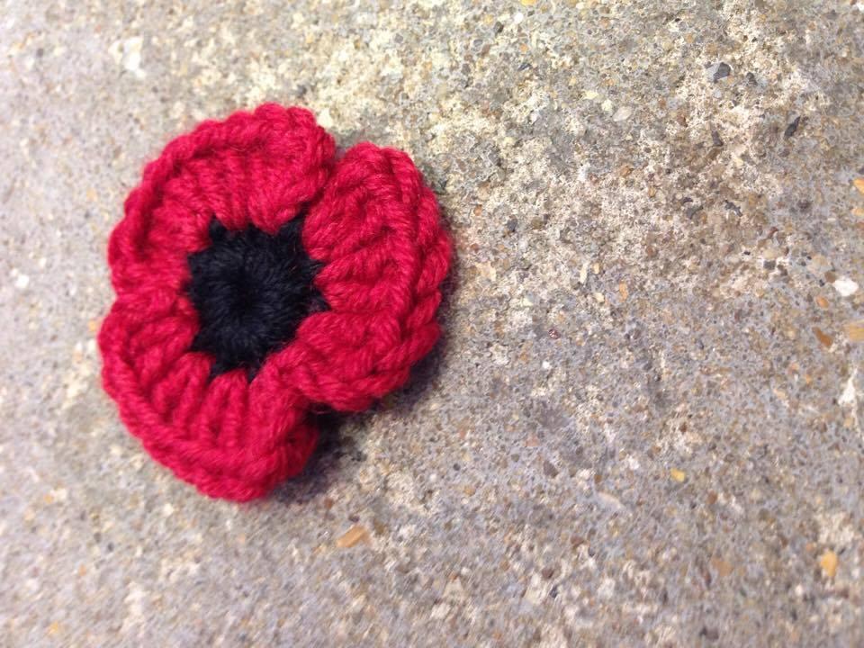 single red poppy.jpg