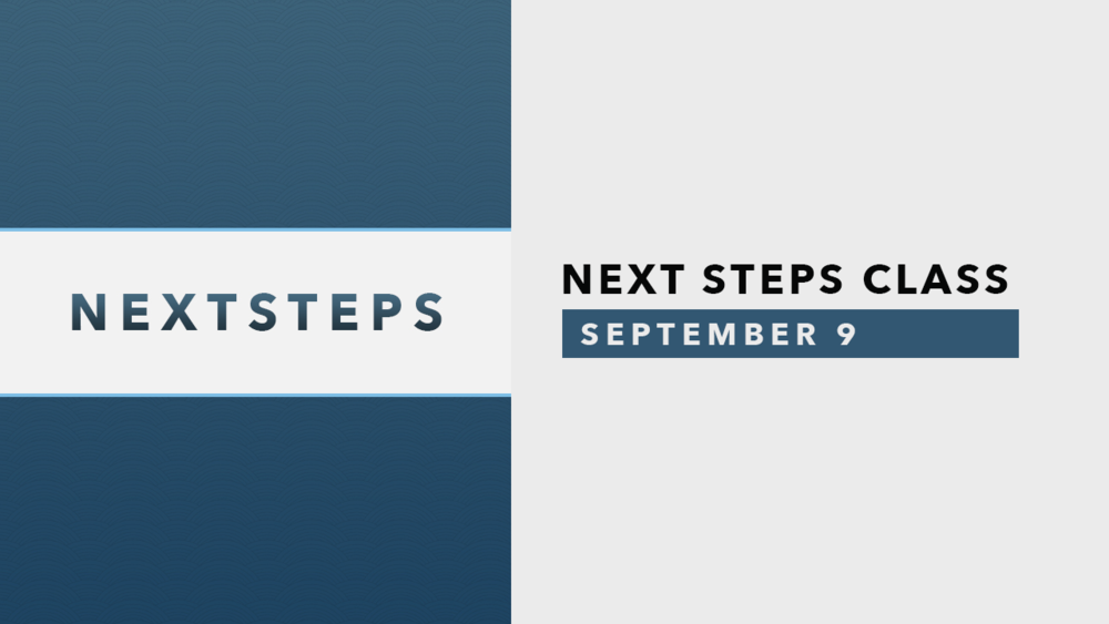 Next Steps - September 9.png