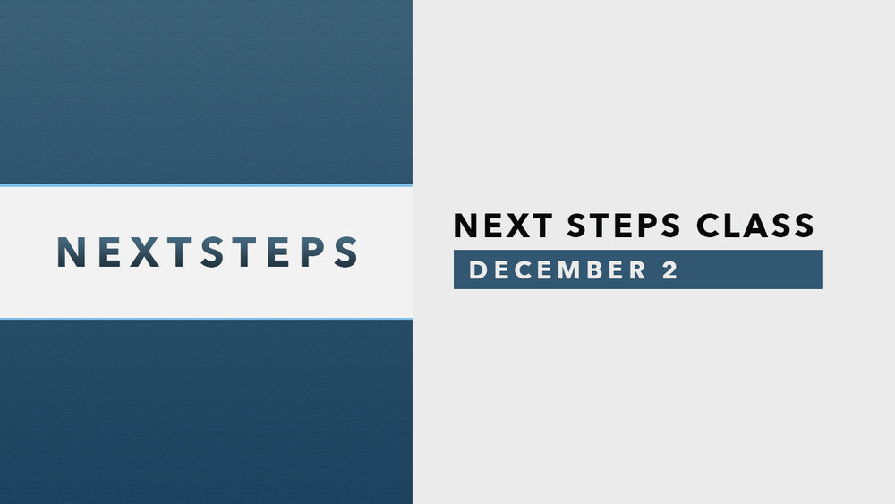 Next Steps Slide-Dec 2.jpg