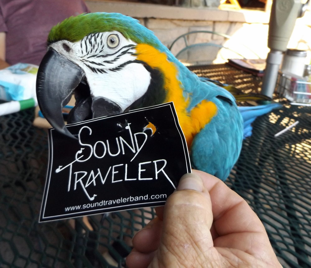 One of Sound Traveler's cutest fans!