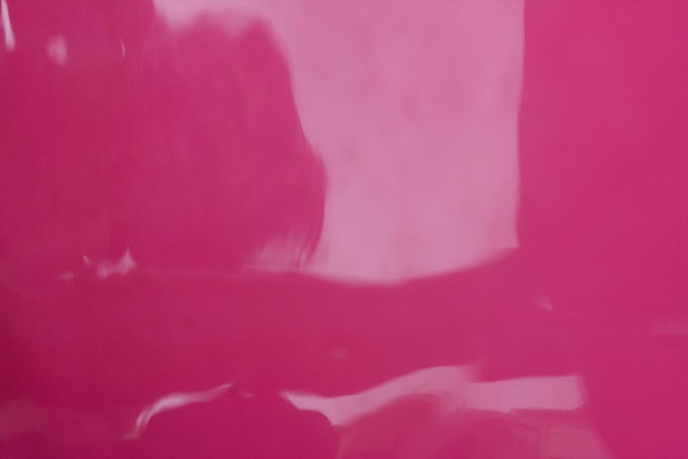 rosa06.jpg