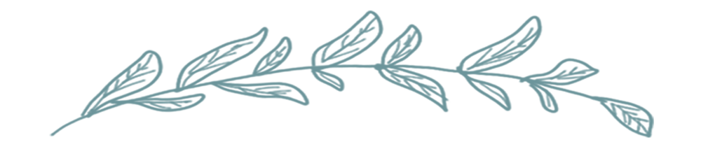 Top leaf_logo.png