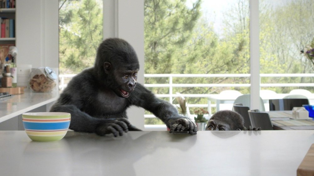 Corning Gorilla Glass - Counter Attacks, Sneak Attacks