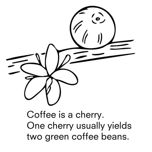 1-cherry.jpg