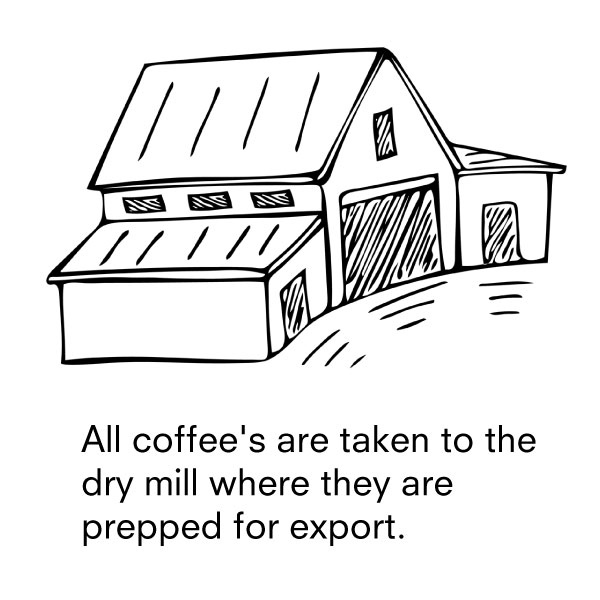 7-drymill.jpg