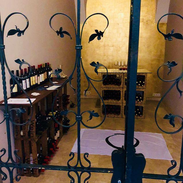 QvevriWein Austeilung Pop-Up innere Stadt 1010 Wien. #qvevriwein #popup #plankengasse #6 #qvevri #amberwine #weinblog #wineglass #weinkisten #orangewine #amberwine #wine #winebox #wineporn #winetime #winelover #wineoclock #winetasting #weinfest #trinken #geniesen #love