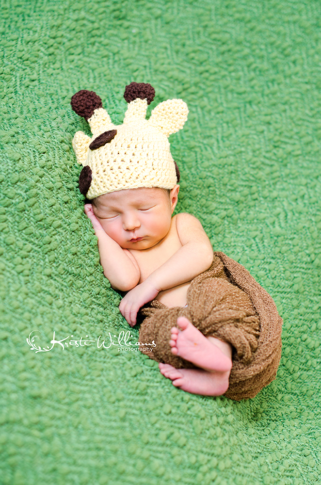 baby boy newborn photography colorado springs details
