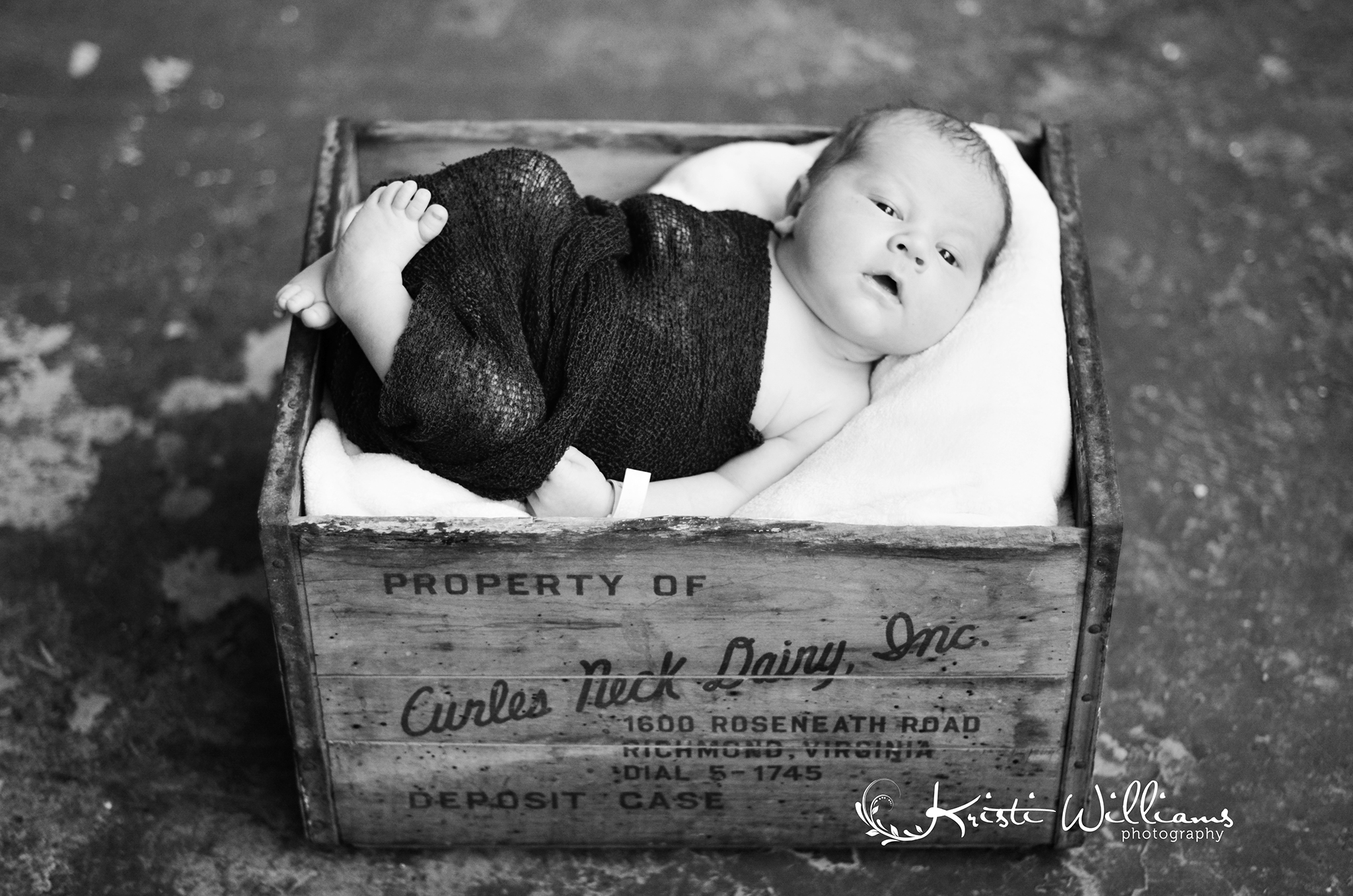 colorado springs newborn baby infant photography