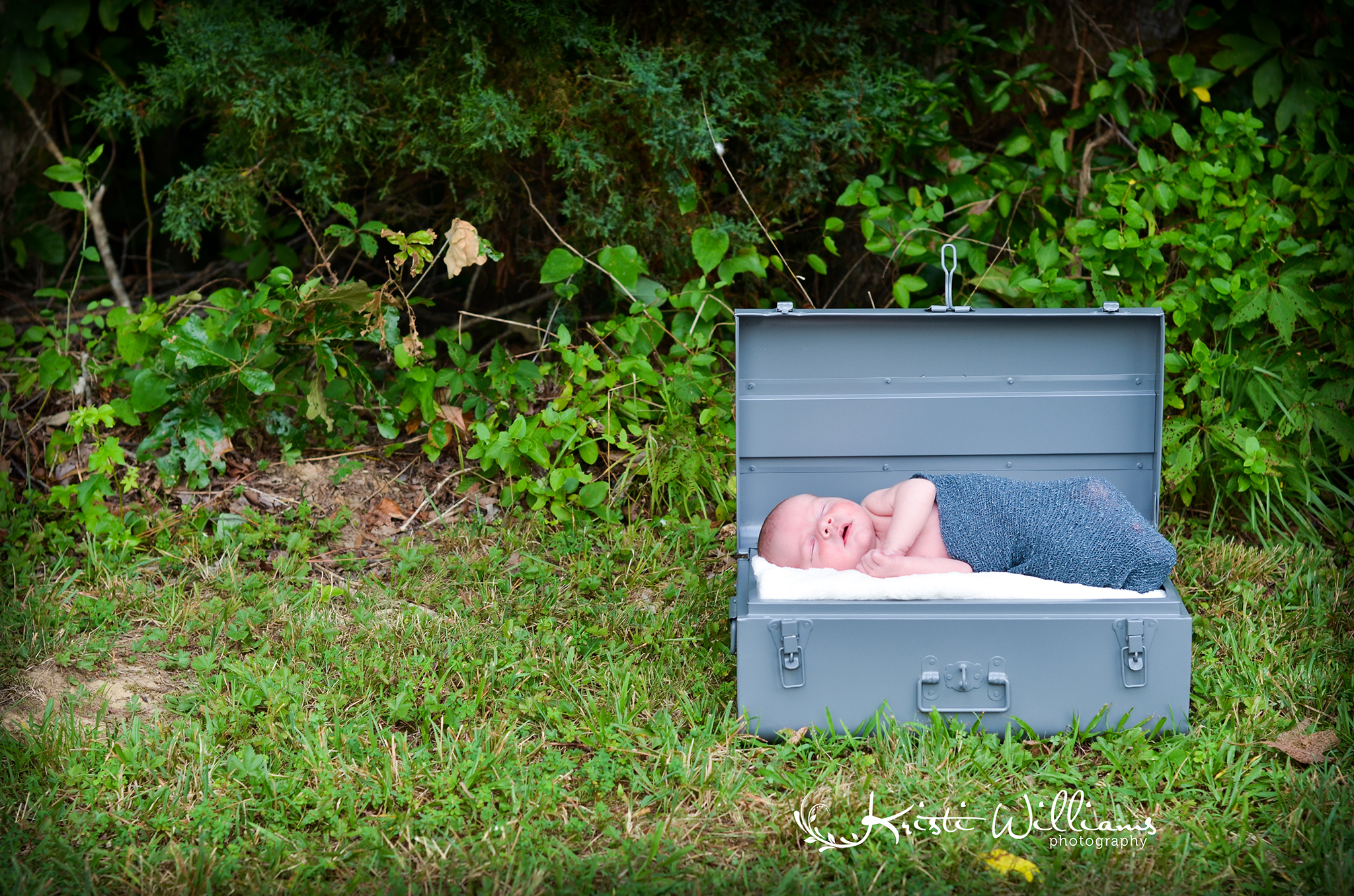 newborn colorado springs photographer