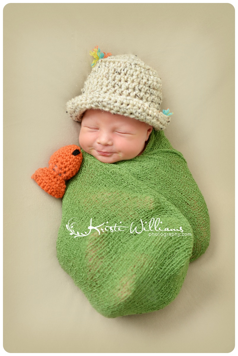 colorado springs family photography kristi williams