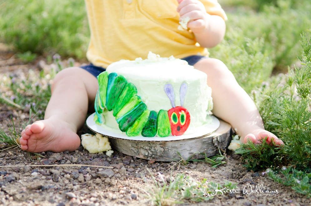 very hungry caterpillar cake smash 1st birthday baby photographer colorado springs