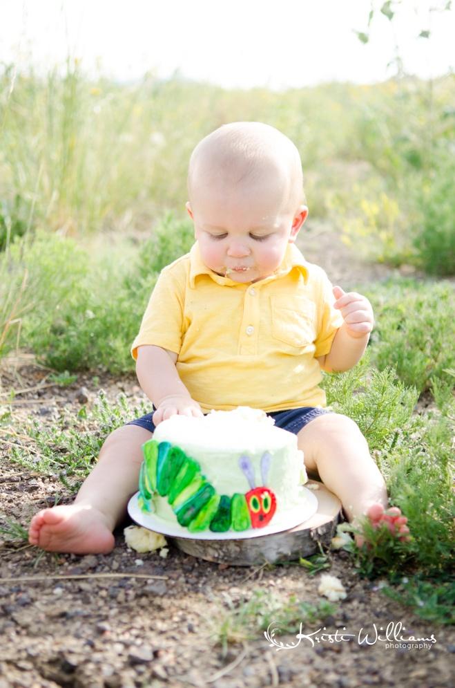 very hungry caterpillar cake smash 1st birthday baby photographer colorado springs