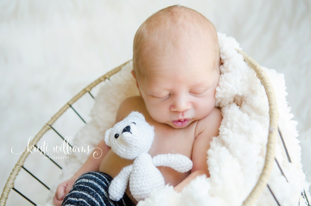 newborn in home photography colorado springs kristi williams photography