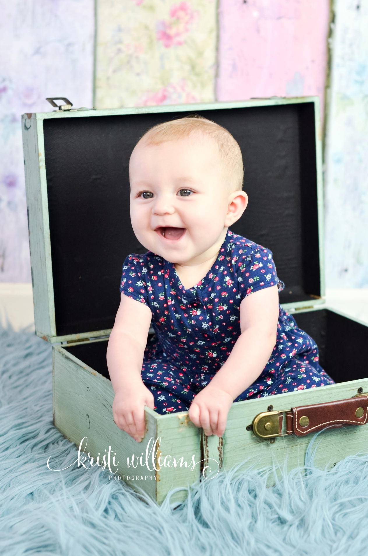 6 month photography by Kristi Williams Photography Colorado Springs
