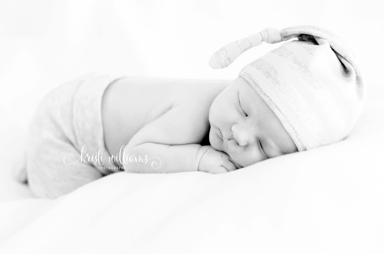 newborn photography by Kristi Williams Photography Colorado Springs