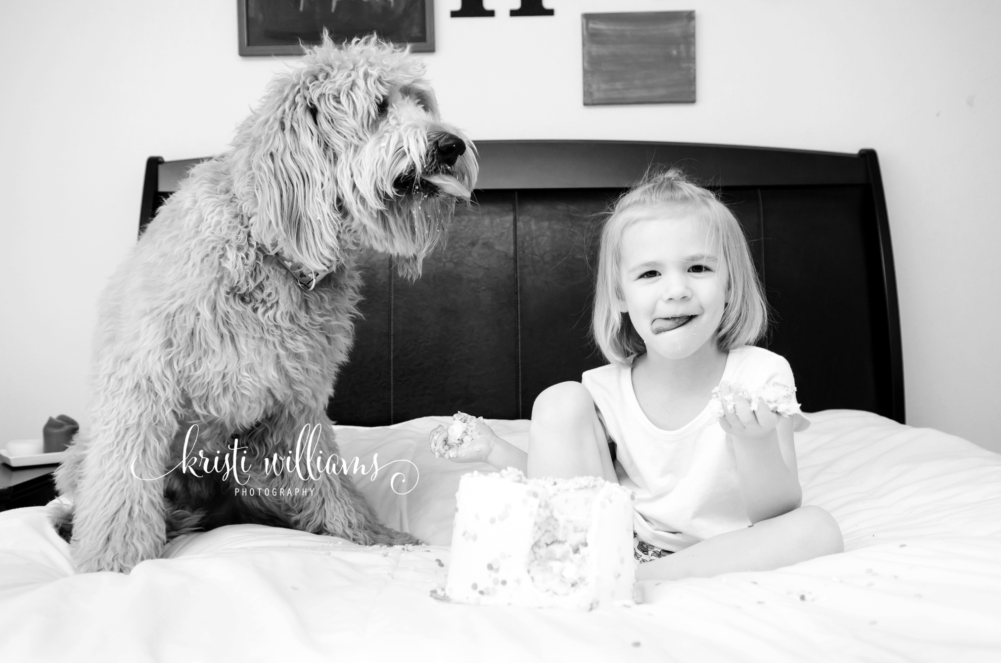 4 year old cake smash colorado springs by Kristi Williams Photography