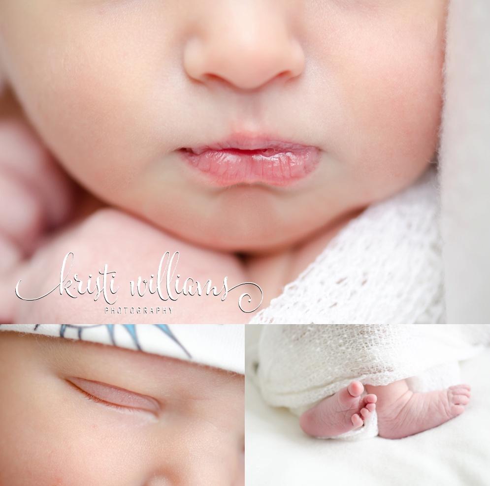 Colorado Springs baby newborn photographer Kristi Williams Photography