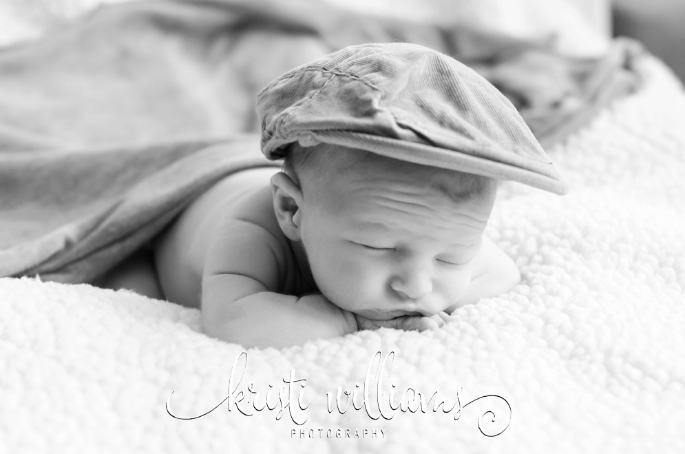 Colorado Springs baby newborn photographer Kristi Williams Photography