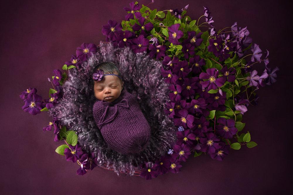 kwp_violet.jpg