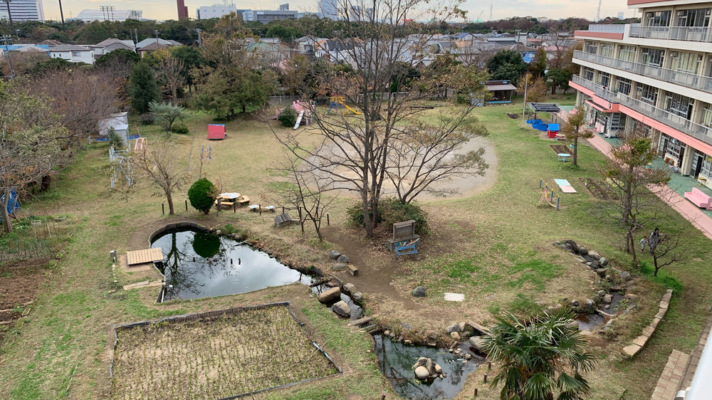 A view of the autumn landscape at Akitsu Elementary in Japan. The green schoolyard at this school includes a large rice paddy, a wetland/pond ecosystem, shade trees, fruit trees, grassy play spaces, rolling hills, group seating, and parent-built play elements.