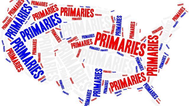 Primaries 5.jpg