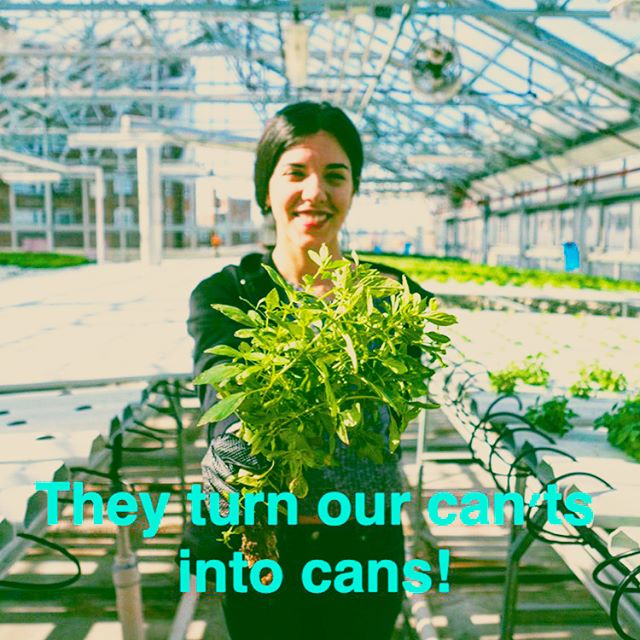 Big shout out to our female crew who turn our cant's into cans 😉 💚! #urbanagriculture #nycurbanag #nycurbanag #hydroponics #futurefarmer #womencrushwednesday #womanpower #lovemycoworkers