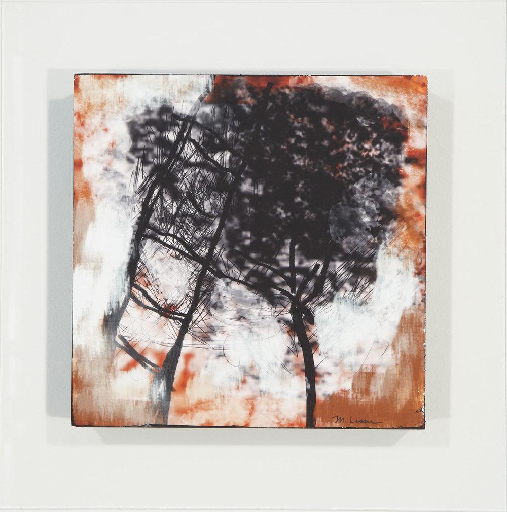 """Trees.   6"""" x 6"""", 2013."""