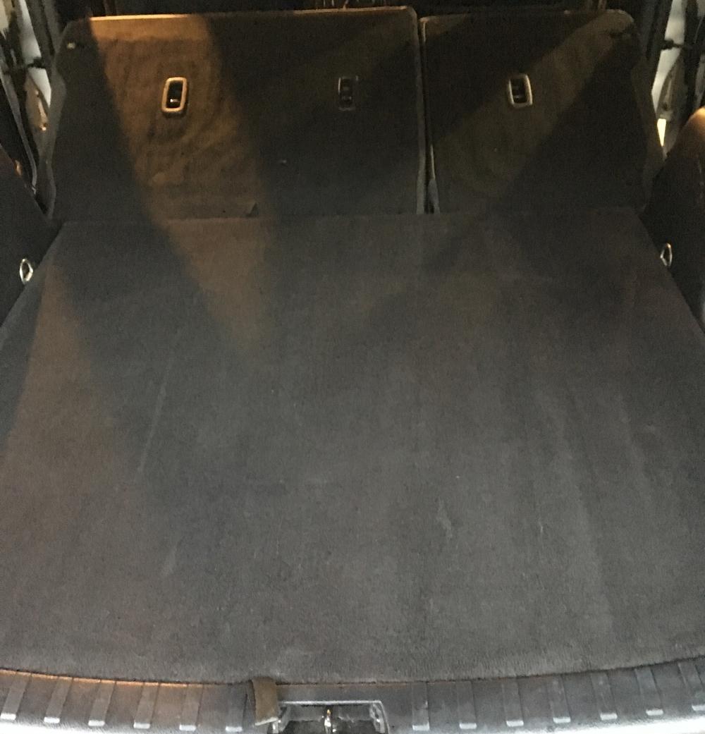 shampooedcarpet.JPG