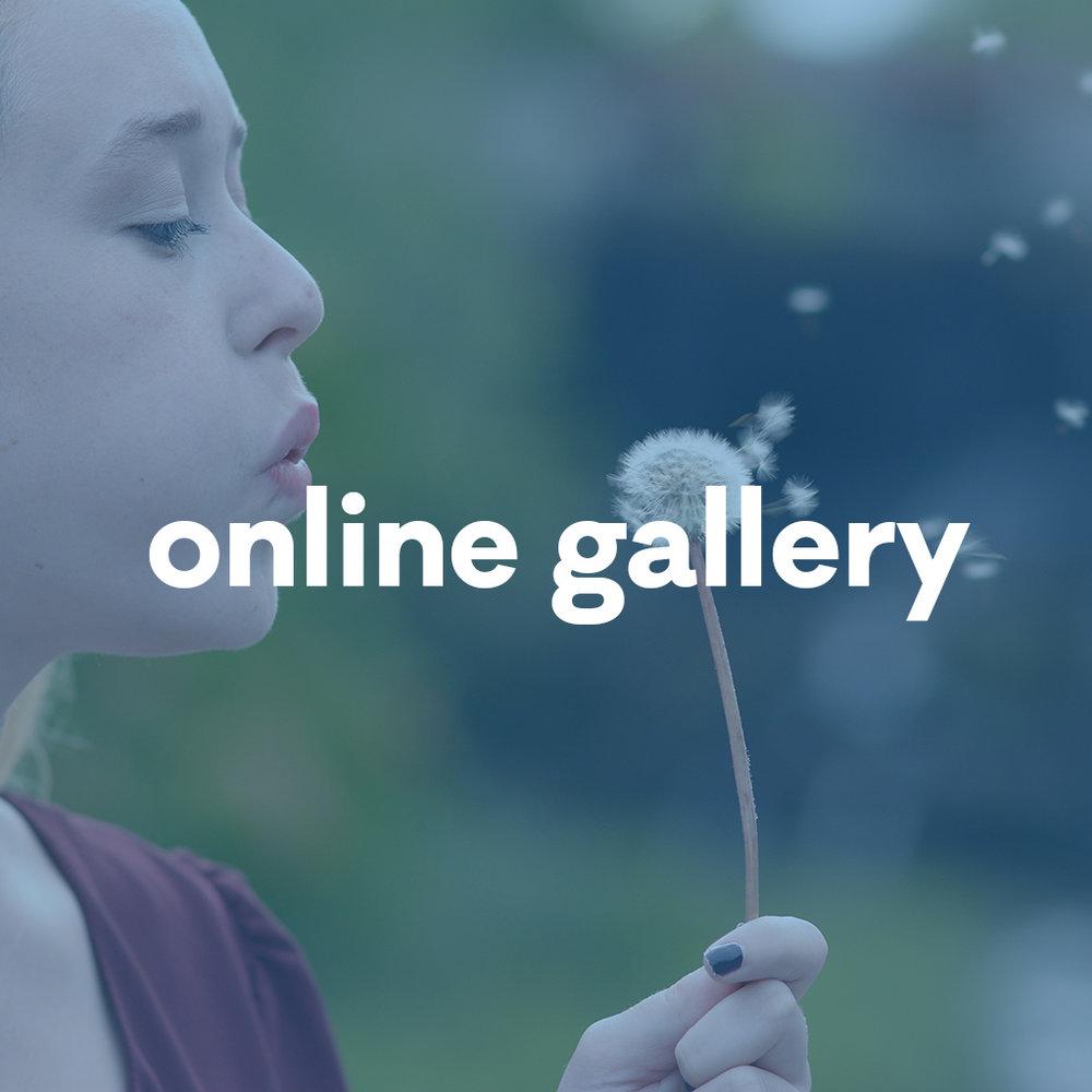 1 online gallery.jpg