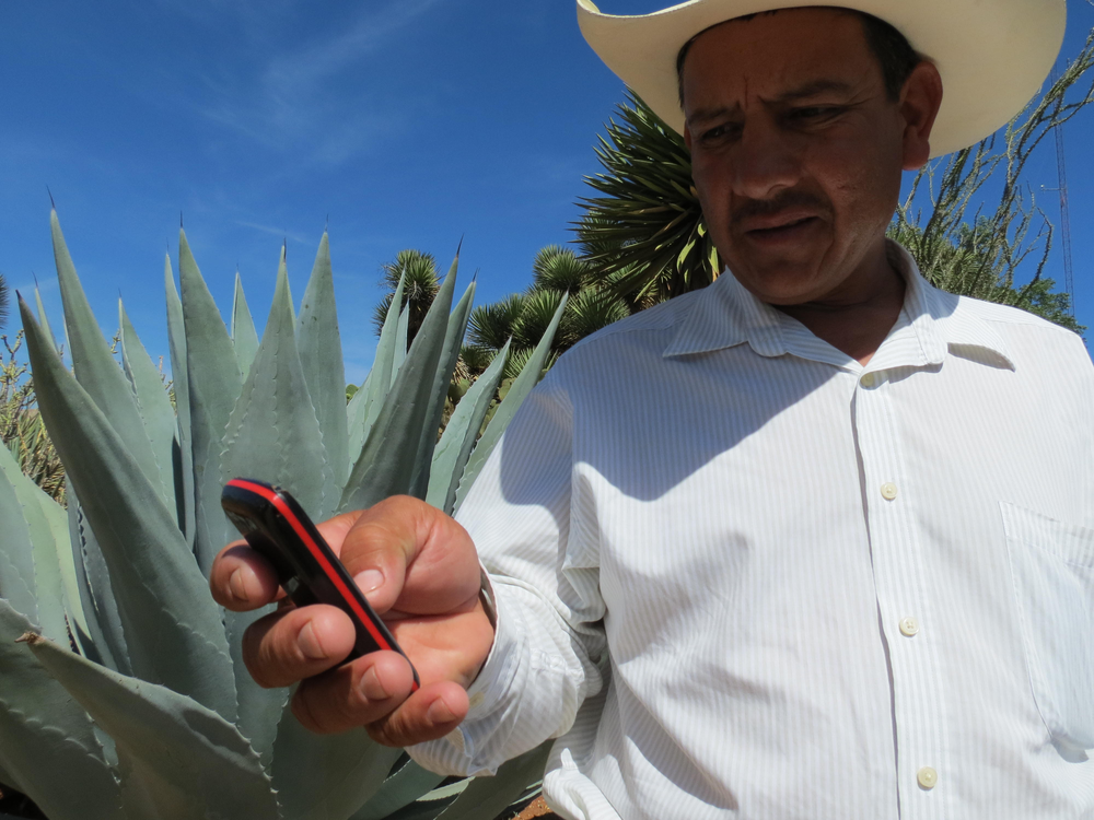 Are you a farmer?  - Do you want to receive information for your type of crop every week, directly in your phone?Learn more here!
