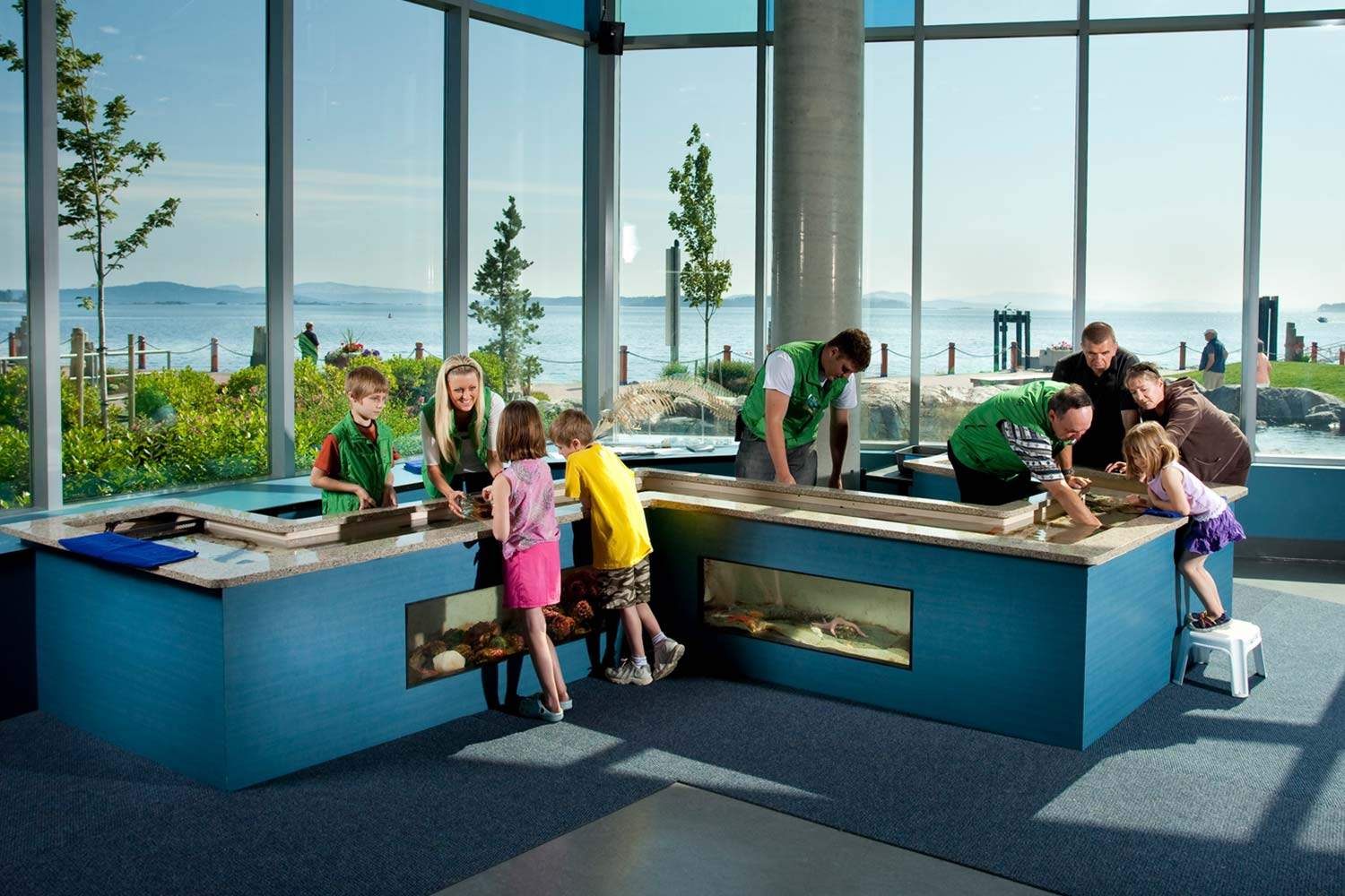 School Programs In Sidney The Salish Sea And Greater Victoria BC