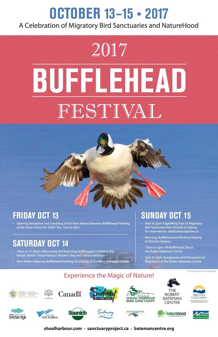FINAL Bufflehead2017 Poster 11x17 R10.jpeg