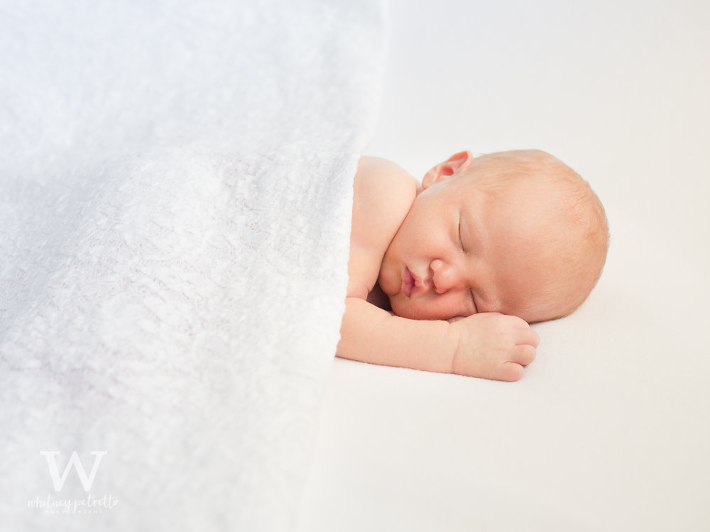 Miss Ava Jayne | Newborn Photographer | Family Photographer | Portland, OR | Whitney Petretto Photography