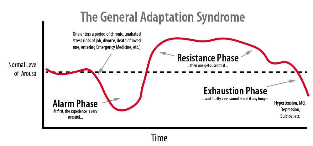 General Adaptation Syndrome.jpg