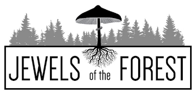 JewelsOfTheForestLogo.jpg