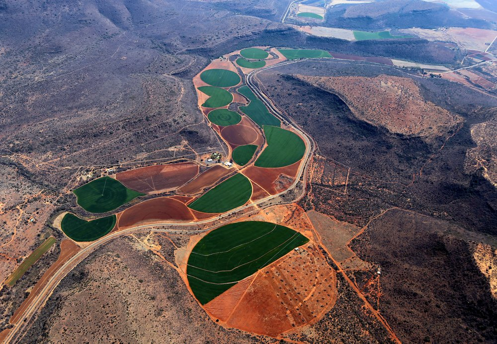 Agriculture in a dry deciduous region of South Africa.