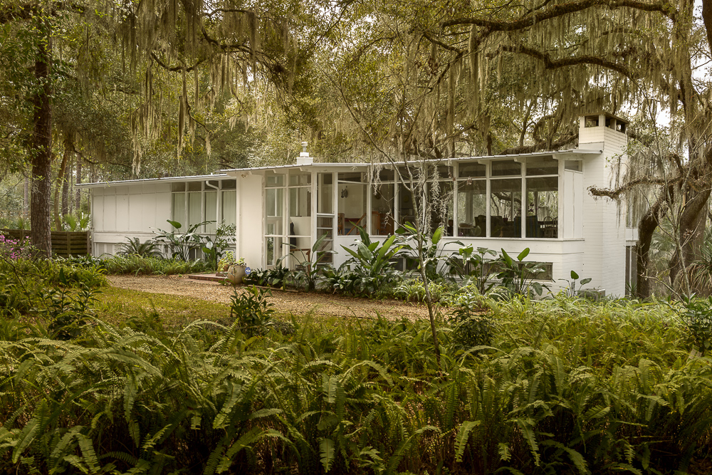 Modern Gainesville — Home