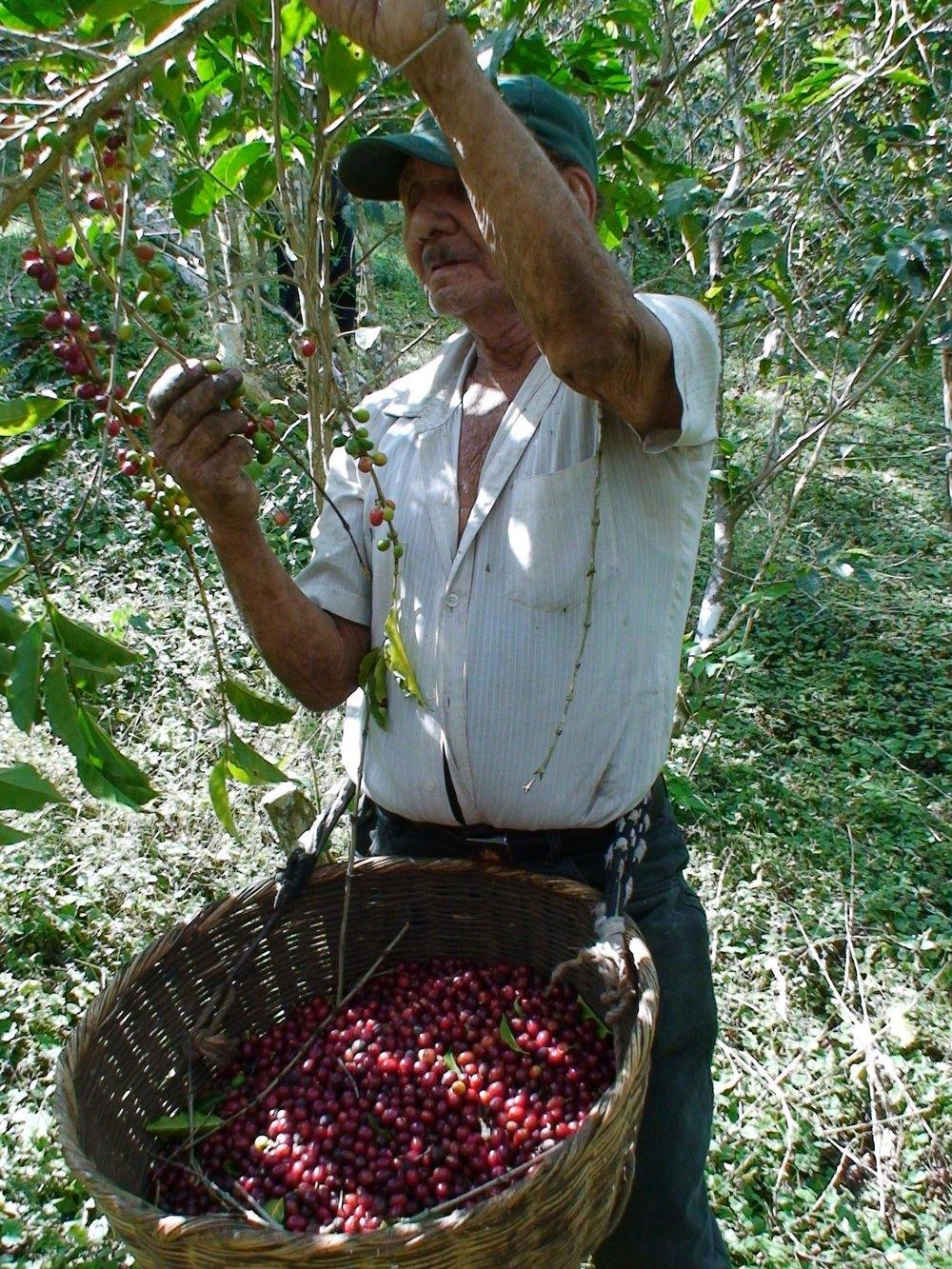 El Salvador - El Martillo3.jpg